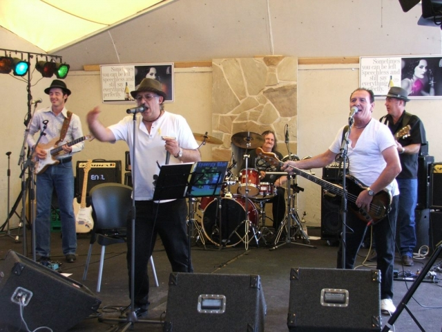 Synergy Blues at Bushfire Benefit Anglers Hotel